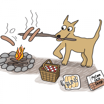 dog campfire hot dogs